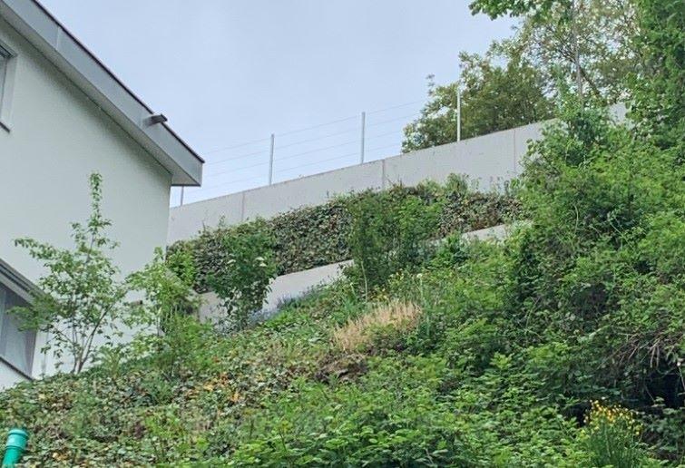 Mauer Stansstad.jpg